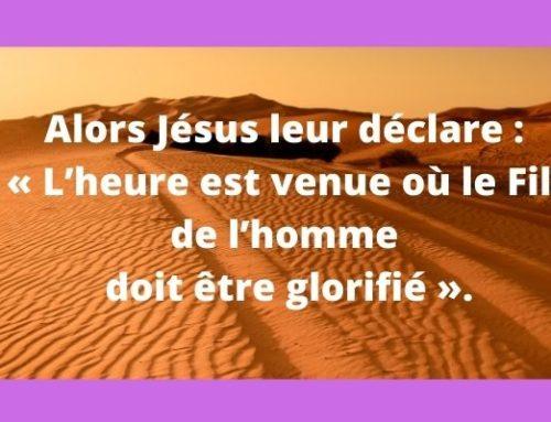 « Si le grain de blé tombé en terre meurt, il porte beaucoup de fruit » (Jn 12, 20-33)