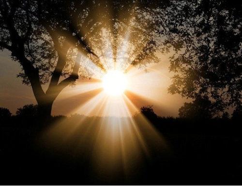 Samedi de Pâques : « Il nous est impossible de nous taire sur ce que nous avons vu et entendu » Ac 4,13-21 // Ps 117 (118) // Mc 16,9-15